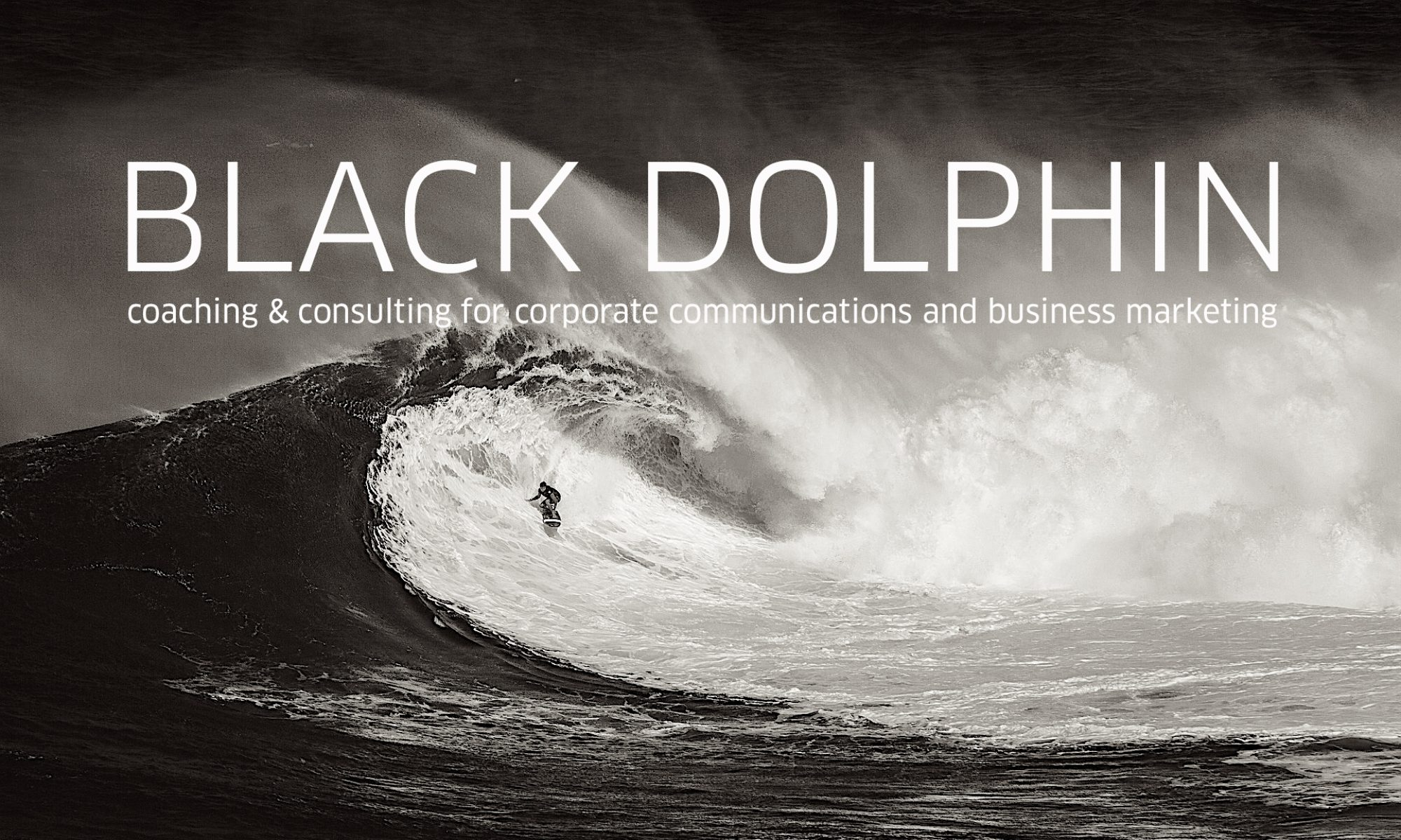 Black Dolphin Corporate Brand Marketing and Business Communications