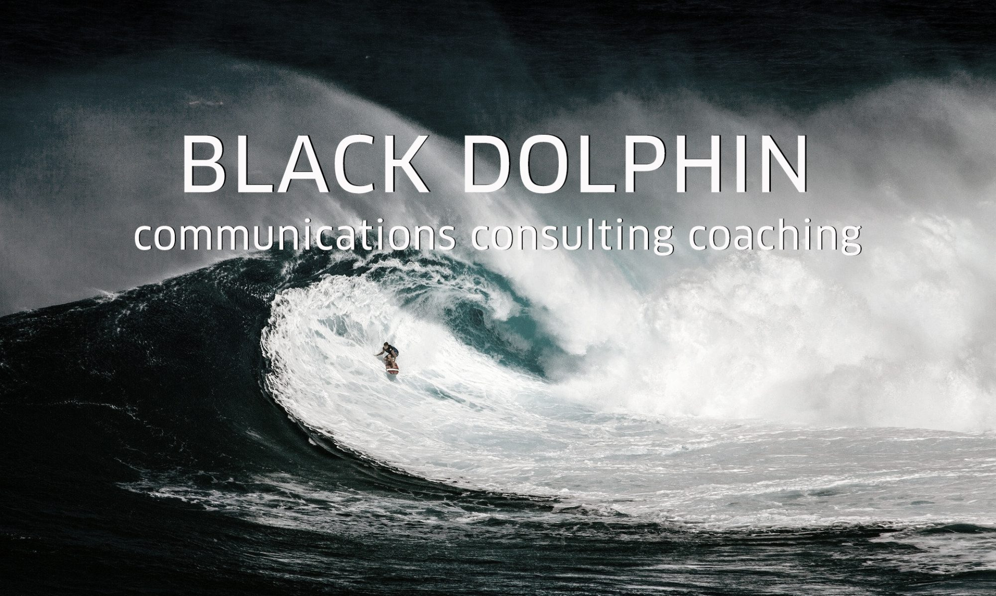 Black Dolphin Corporate Brand Communications